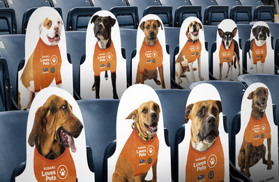 Subaru of America and Philadelphia Union showcase adoptable shelter dogs at Subaru Park: Automaker Creates Photos of Real Adoptable Dogs to Fill Fury Fan Section at Subaru Park to Help Local Shelter Dogs Find Loving Homes.