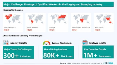 Snapshot of key challenge impacting BizVibe's forging and stamping industry group.